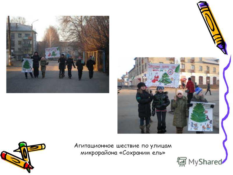 Агитационное шествие по улицам микрорайона «Сохраним ель»