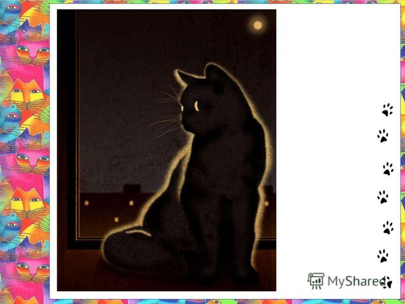 Картина кот на окне вилли джеймса кот на окне