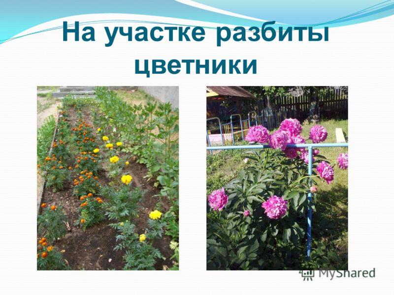 На участке разбиты цветники