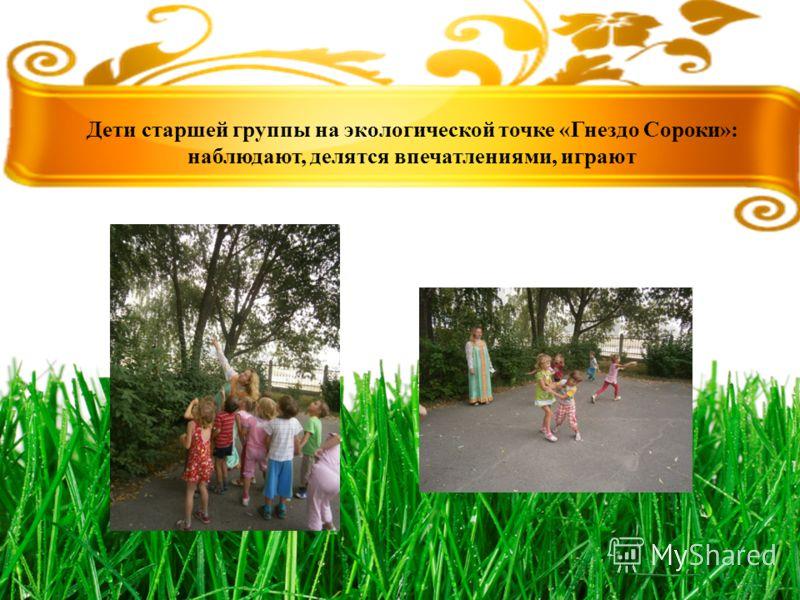 Дети старшей группы на экологической точке «Гнездо Сороки»: наблюдают, делятся впечатлениями, играют