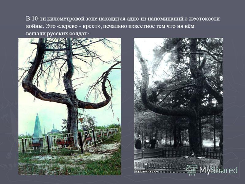 В 10-ти километровой зоне находится одно из напоминаний о жестокости войны. Это «дерево - крест», печально известное тем что на нём вешали русских солдат..
