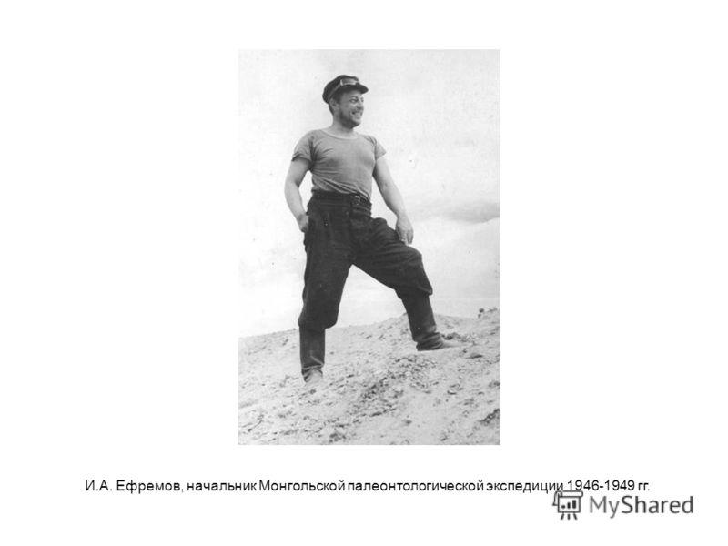И.А. Ефремов, начальник Монгольской палеонтологической экспедиции 1946-1949 гг.