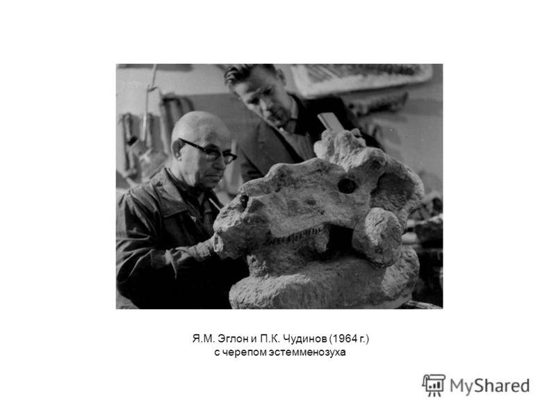 Я.М. Эглон и П.К. Чудинов (1964 г.) с черепом эстемменозуха