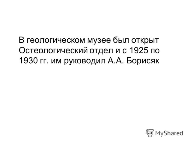 В геологическом музее был открыт Остеологический отдел и с 1925 по 1930 гг. им руководил А.А. Борисяк