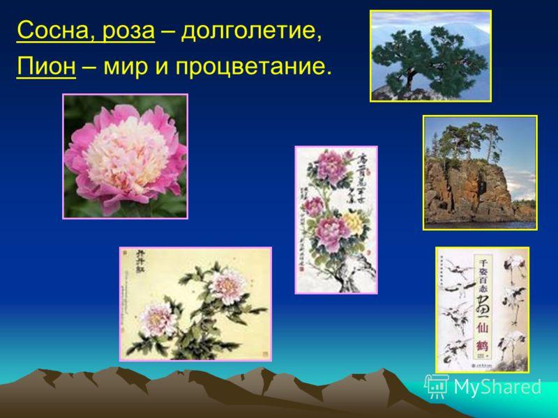 Сосна, роза – долголетие, Пион – мир и процветание.