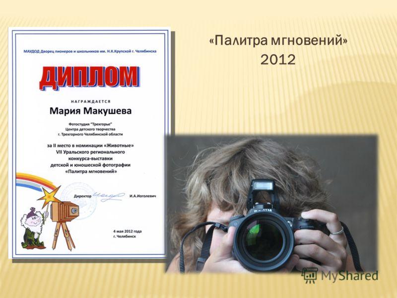 «Палитра мгновений» 2012