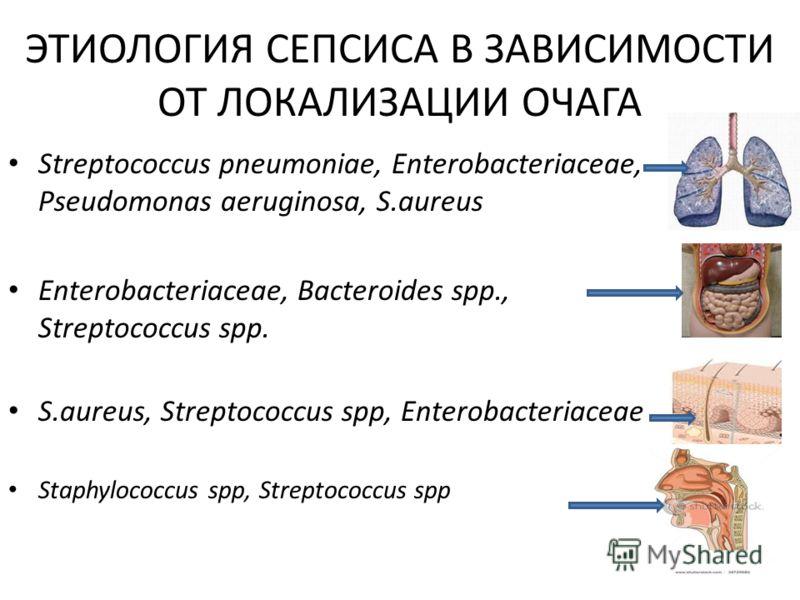 ЭТИОЛОГИЯ СЕПСИСА В ЗАВИСИМОСТИ ОТ ЛОКАЛИЗАЦИИ ОЧАГА Streptococcus pneumoniae, Enterobacteriaceae, Pseudomonas aeruginosa, S.aureus Enterobacteriaceae, Bacteroides spp., Streptococcus spp. S.aureus, Streptococcus spp, Enterobacteriaceae Staphylococcu