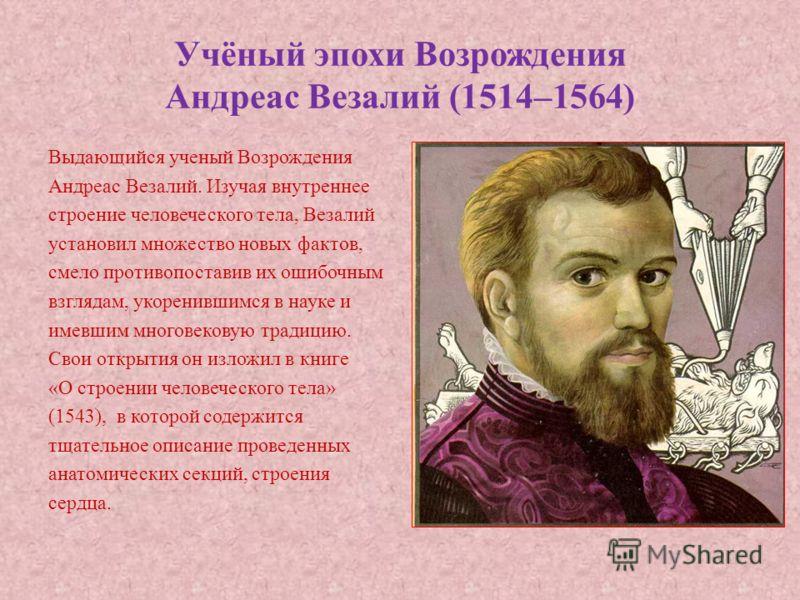 Учёный эпохи Возрождения Андреас Везалий (1514–1564) Выдающийся ученый Возрождения Андреас Везалий. Изучая внутреннее строение человеческого тела, Везалий установил множество новых фактов, смело противопоставив их ошибочным взглядам, укоренившимся в