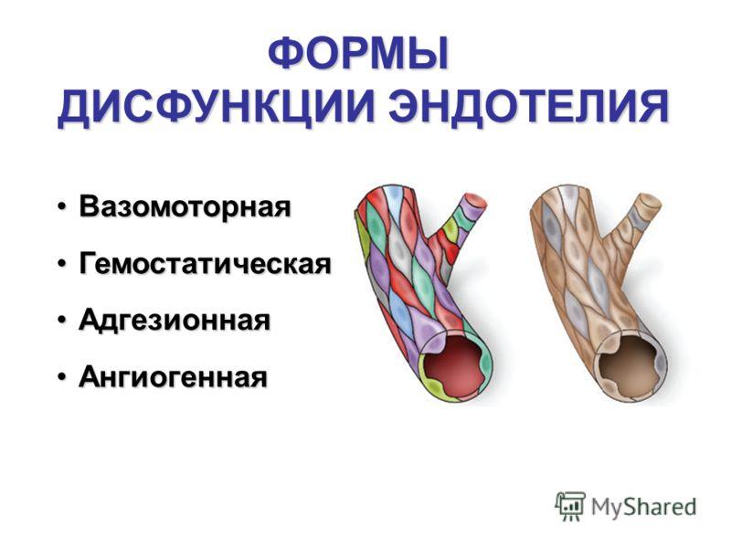 ВазомоторнаяВазомоторная ГемостатическаяГемостатическая АдгезионнаяАдгезионная АнгиогеннаяАнгиогенная ФОРМЫ ДИСФУНКЦИИ ЭНДОТЕЛИЯ
