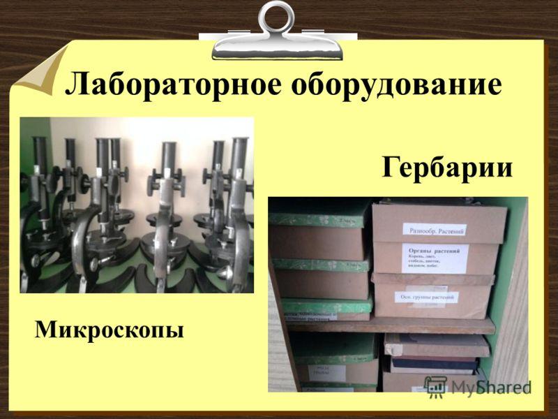 Лабораторное оборудование Гербарии Микроскопы