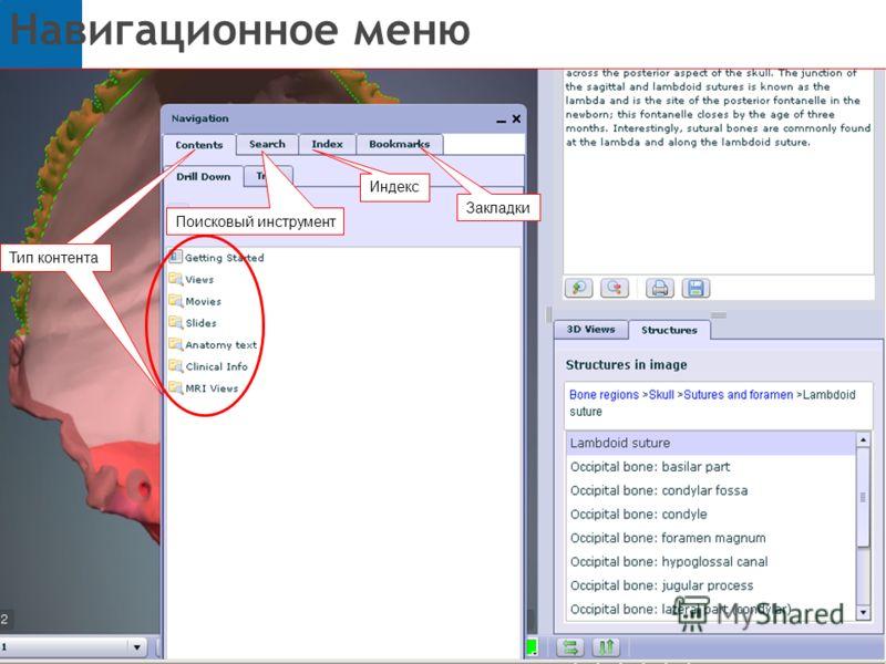 Навигационное меню Тип контента Поисковый инструмент Закладки Индекс Тип контента