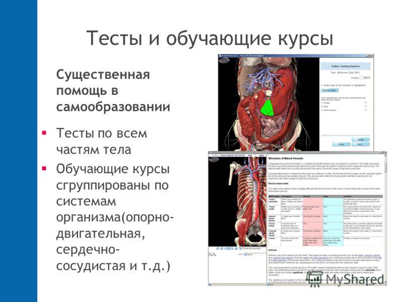 Тесты и обучающие курсы Существенная помощь в самообразовании Тесты по всем частям тела Обучающие курсы сгруппированы по системам организма(опорно- двигательная, сердечно- сосудистая и т.д.)