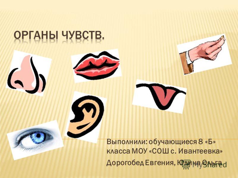 Выполнили: обучающиеся 8 «Б» класса МОУ «СОШ с. Ивантеевка» Дорогобед Евгения, Юлина Ольга