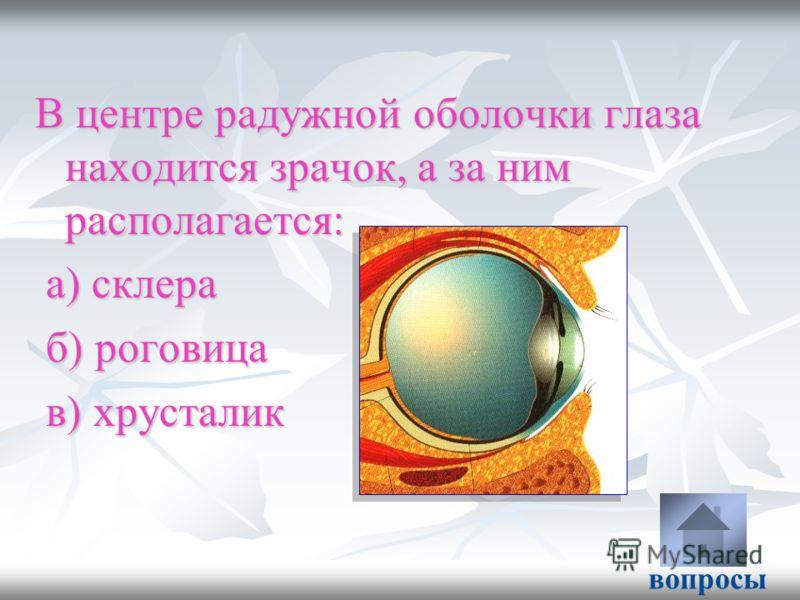 В центре радужной оболочки глаза находится зрачок, а за ним располагается: а) склера а) склера б) роговица б) роговица в) хрусталик в) хрусталик вопросы