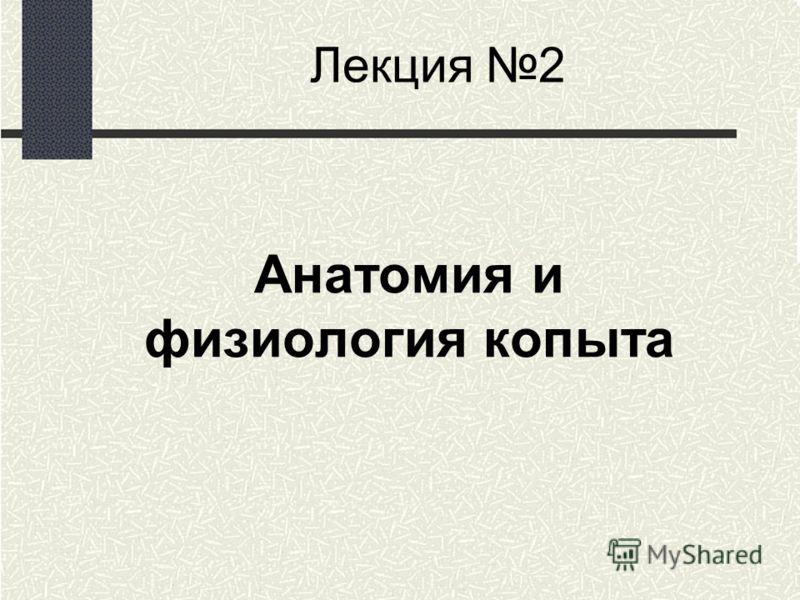 Лекция 2 Анатомия и физиология копыта