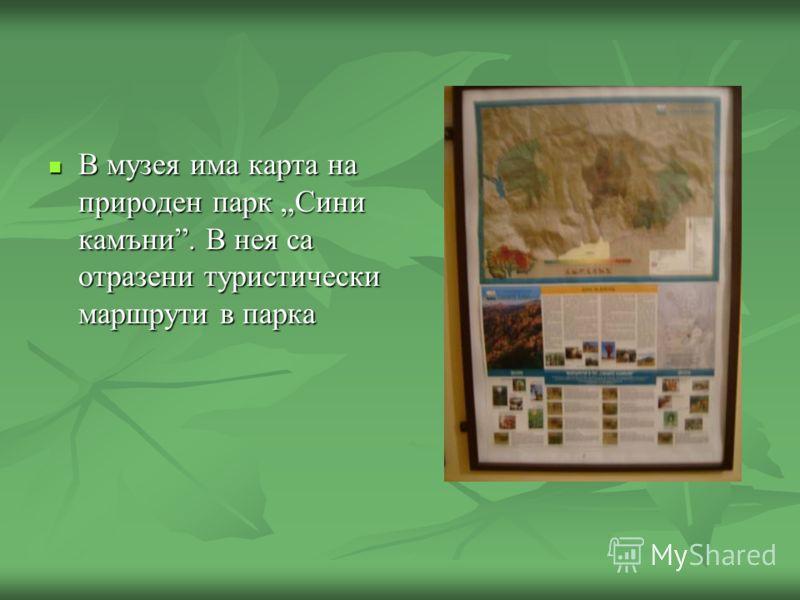 В музея има карта на природен парк Сини камъни. В нея са отразени туристически маршрути в парка В музея има карта на природен парк Сини камъни. В нея са отразени туристически маршрути в парка
