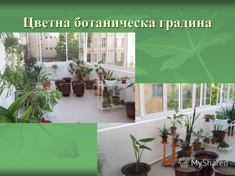 Цветна ботаническа градина