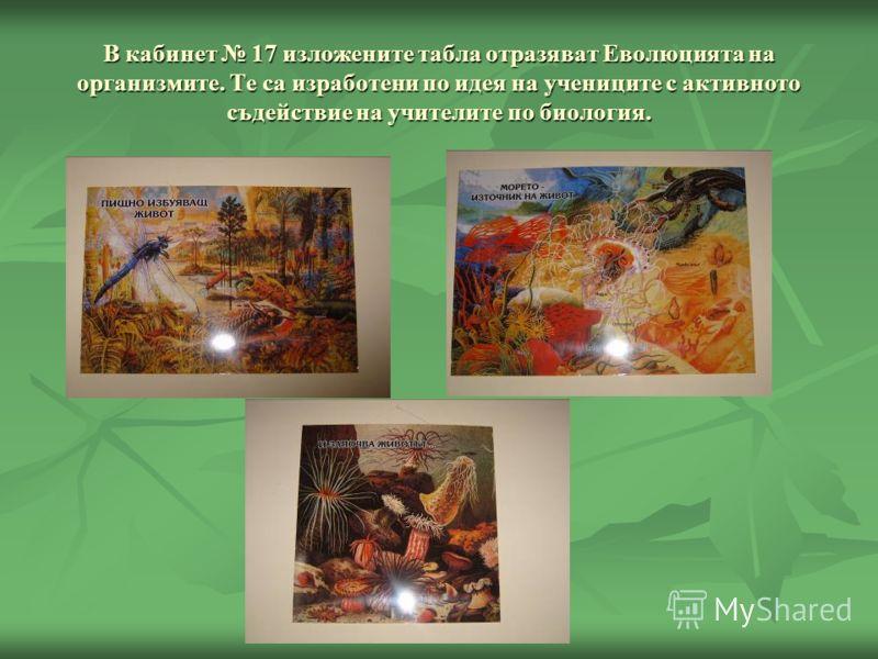 В кабинет 17 изложените табла отразяват Еволюцията на организмите. Те са изработени по идея на учениците с активното съдействие на учителите по биология.
