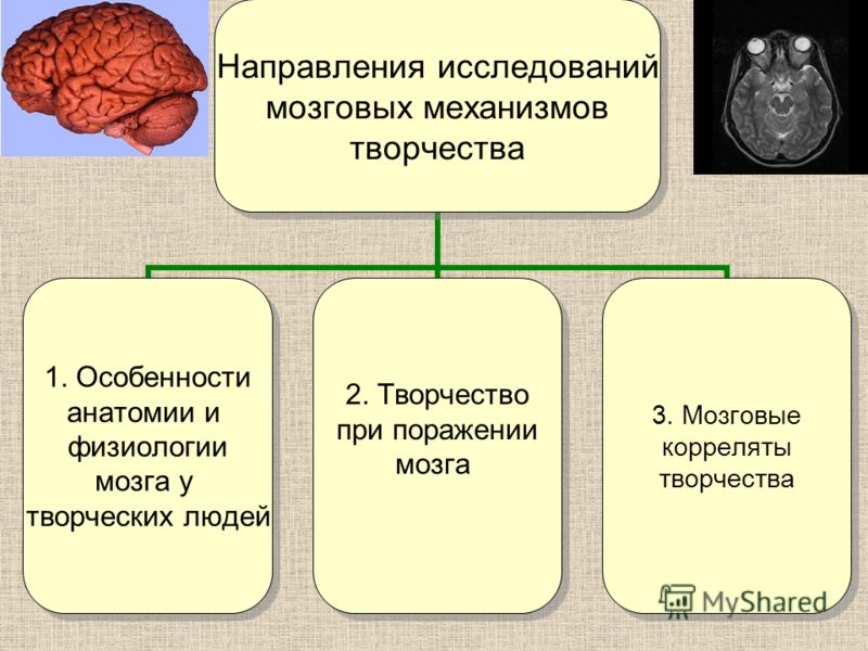 Направления исследований мозговых механизмов творчества 1. Особенности анатомии и физиологии мозга у творческих людей 2. Творчество при поражении мозга 3. Мозговые корреляты творчества