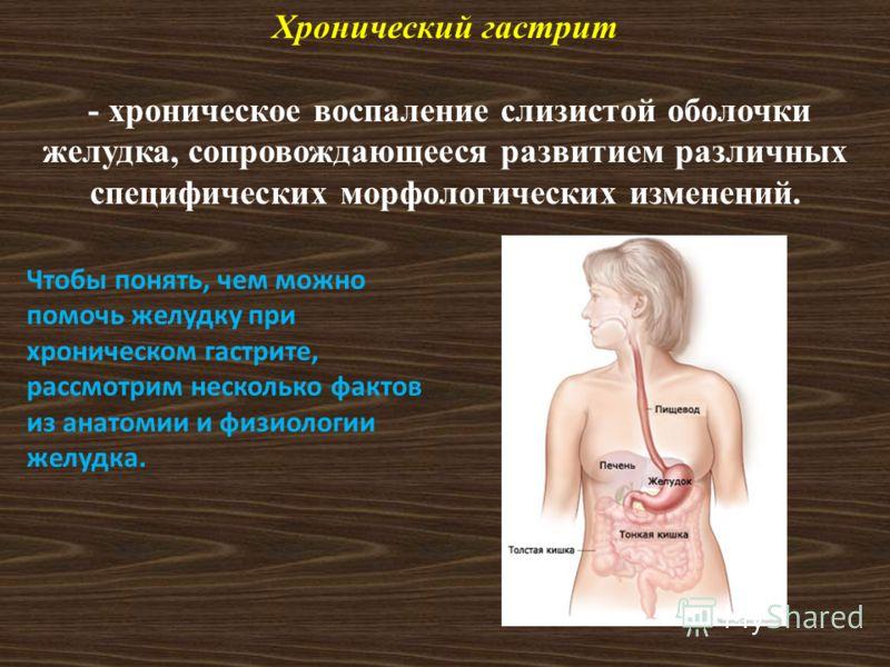 Хронический гастрит - хроническое воспаление слизистой оболочки желудка, сопровождающееся развитием различных специфических морфологических изменений. Чтобы понять, чем можно помочь желудку при хроническом гастрите, рассмотрим несколько фактов из ана