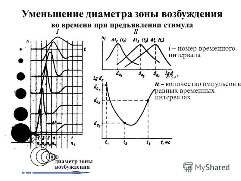 Уменьшение диаметра зоны возбуждения во времени при предъявлении стимула диаметр зоны возбуждения i – номер временного интервала n – количество импульсов в равных временных интервалах