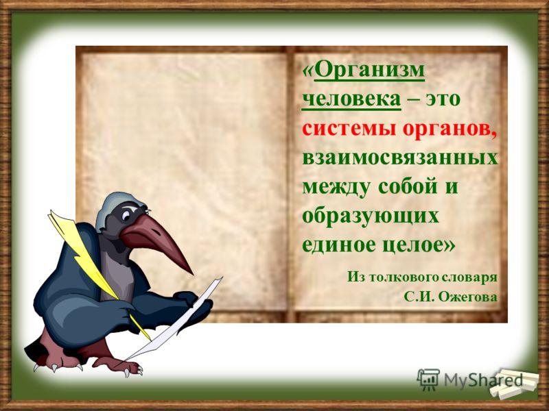 «Организм человека – это системы органов, взаимосвязанных между собой и образующих единое целое» Из толкового словаря С.И. Ожегова