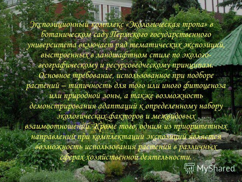 Экспозиционный комплекс «Экологическая тропа» в ботаническом саду Пермского государственного университета включает ряд тематических экспозиций, выстроенных в ландшафтном стиле по эколого- географическому и ресурсоведческому принципам. Основное требов