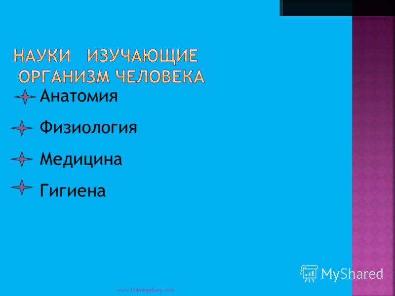 www.themegallery.com Анатомия Физиология Медицина Гигиена