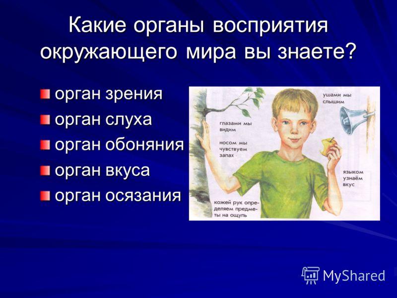 Какие органы восприятия окружающего мира вы знаете? орган зрения орган слуха орган обоняния орган вкуса орган осязания