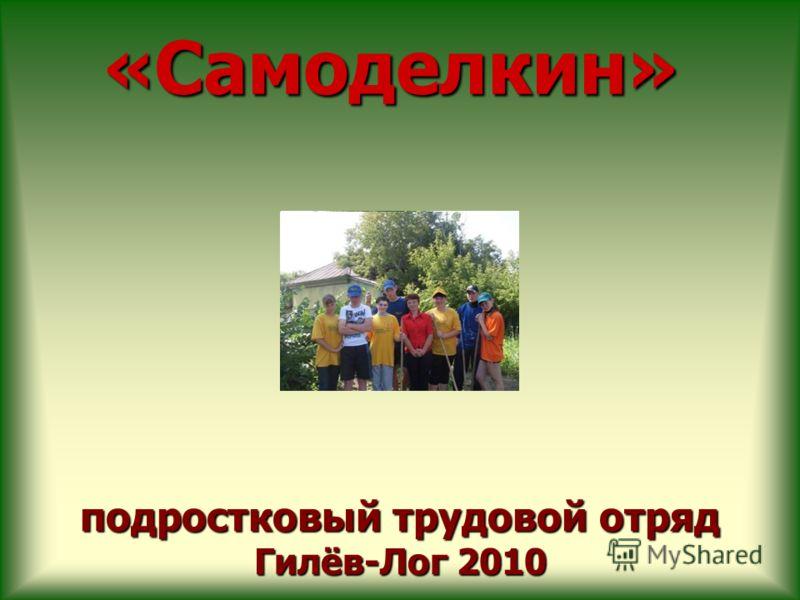 подростковый трудовой отряд Гилёв-Лог 2010 «Самоделкин»