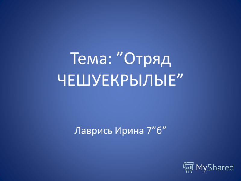 Тема: Отряд ЧЕШУЕКРЫЛЫЕ Лаврись Ирина 7б