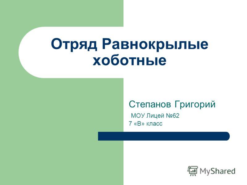 Отряд Равнокрылые хоботные Степанов Григорий МОУ Лицей 62 7 «В» класс