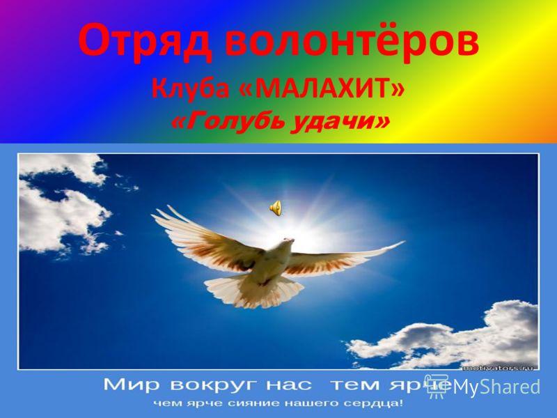 Отряд волонтёров Клуба «МАЛАХИТ» «Голубь удачи»