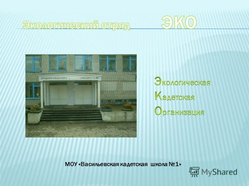 МОУ «Васильевская кадетская школа 1»