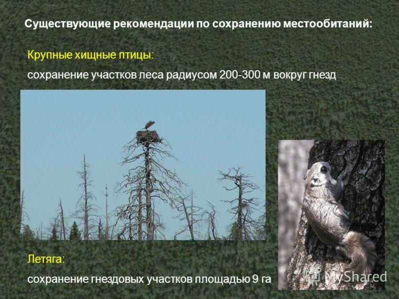 Существующие рекомендации по сохранению местообитаний: Крупные хищные птицы: сохранение участков леса радиусом 200-300 м вокруг гнезд Летяга: сохранение гнездовых участков площадью 9 га