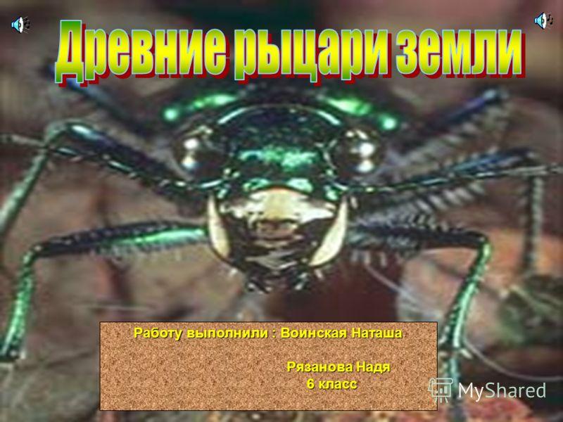 Работу выполнили : Воинская Наташа Рязанова Надя Рязанова Надя 6 класс 6 класс