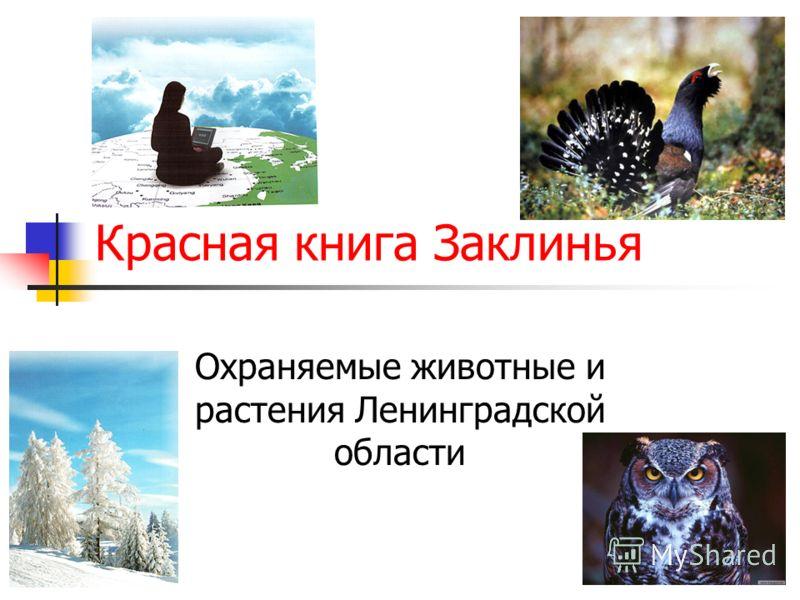 Красная книга Заклинья Охраняемые животные и растения Ленинградской области