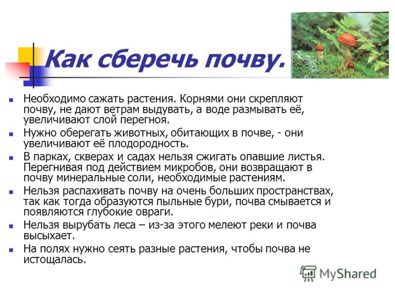 Как сберечь почву. Необходимо сажать растения. Корнями они скрепляют почву, не дают ветрам выдувать, а воде размывать её, увеличивают слой перегноя. Нужно оберегать животных, обитающих в почве, - они увеличивают её плодородность. В парках, скверах и