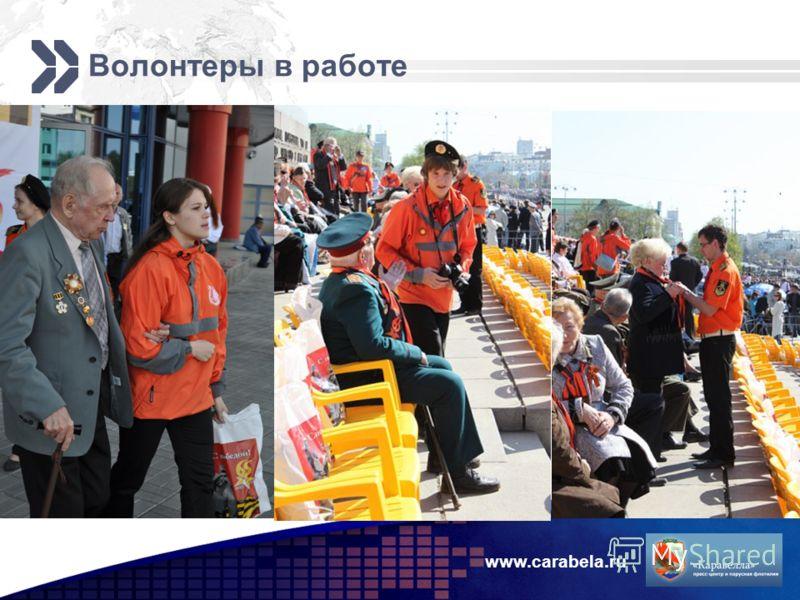 Волонтеры в работе www.carabela.ru