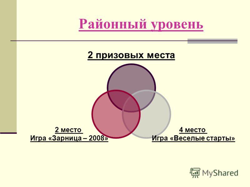 2 призовых места 4 место Игра «Веселые старты» 2 место Игра «Зарница – 2008» Районный уровень