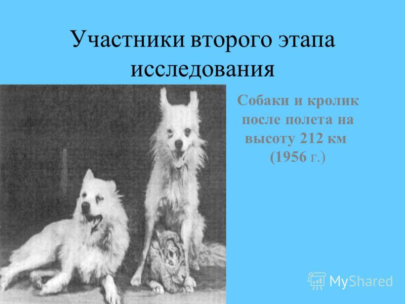 Участники второго этапа исследования Собаки и кролик после полета на высоту 212 км (1956 г.)
