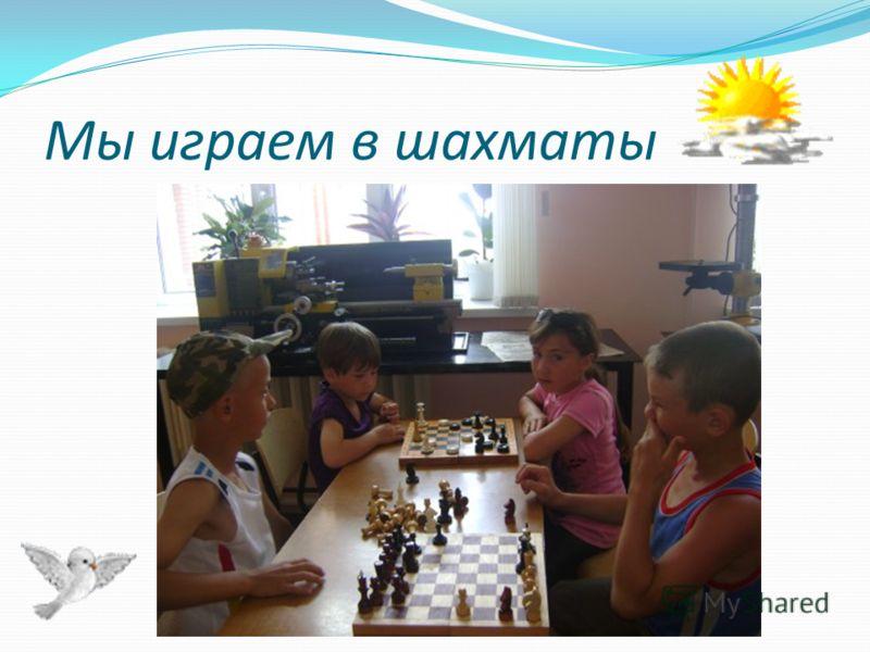 Мы играем в шахматы