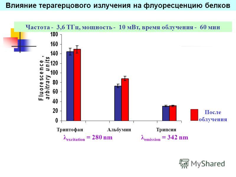 Влияние терагерцового излучения на флуоресценцию белков λ excitation = 280 nmλ emission = 342 nm После облучения ТриптофанТрипсинАльбумин Частота - 3,6 TГц, мощность - 10 мВт, время облучения - 60 мин