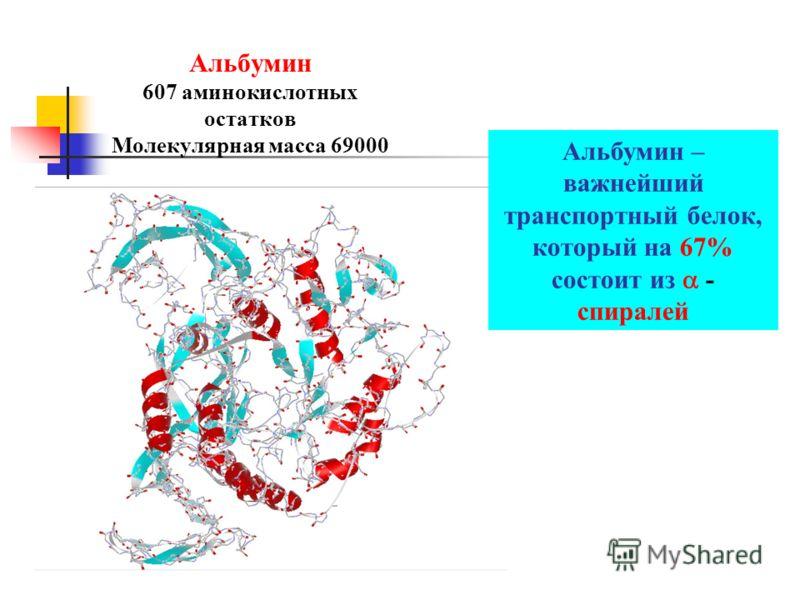 Альбумин 607 аминокислотных остатков Молекулярная масса 69000 Альбумин – важнейший транспортный белок, который на 67% состоит из - спиралей