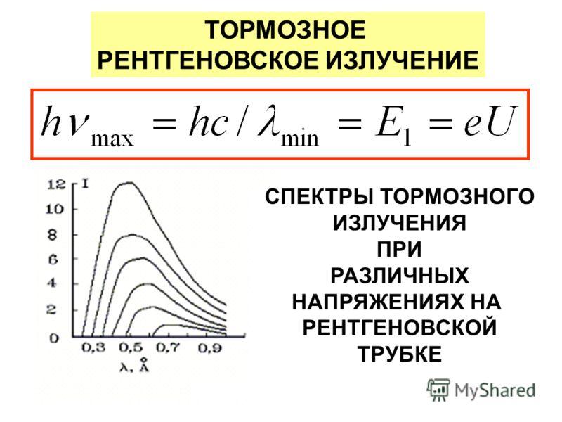 shlyushki-kursk
