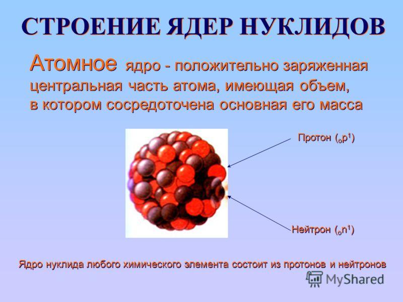 СТРОЕНИЕ ЯДЕР НУКЛИДОВ Протон ( o р 1 ) Нейтрон ( o n 1 ) Ядро нуклида любого химического элемента состоит из протонов и нейтронов Атомное ядро - положительно заряженная центральная часть атома, имеющая объем, в котором сосредоточена основная его мас