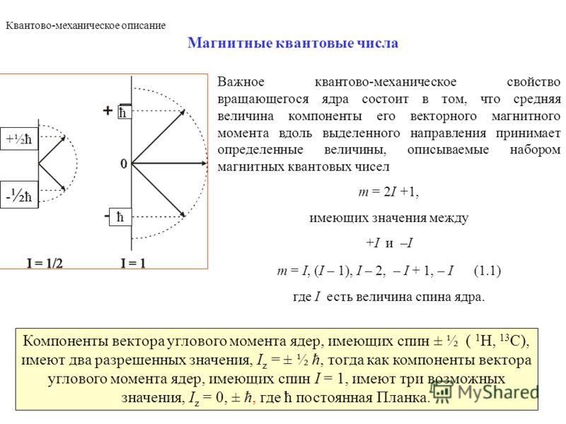4 Магнитные квантовые числа Важное квантово-механическое свойство вращающегося ядра состоит в том, что средняя величина компоненты его векторного магнитного момента вдоль выделенного направления принимает определенные величины, описываемые набором ма