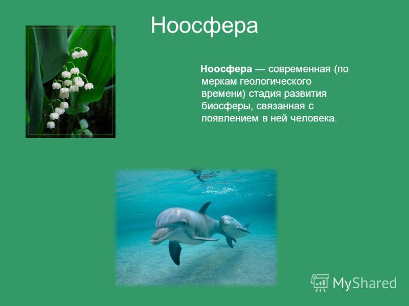 Ноосфера Ноосфера современная (по меркам геологического времени) стадия развития биосферы, связанная с появлением в ней человека.