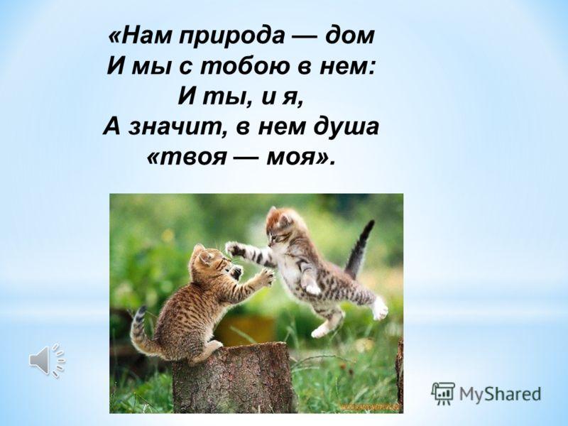 «Нам природа дом И мы с тобою в нем: И ты, и я, А значит, в нем душа «твоя моя».