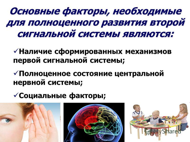 Основные факторы, необходимые для полноценного развития второй сигнальной системы являются: Наличие сформированных механизмов первой сигнальной системы; Полноценное состояние центральной нервной системы; Социальные факторы;